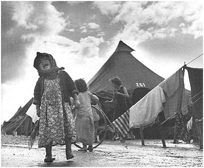 Camp de réfugiés juifs près de Haifa. 1950. photo D. Harris