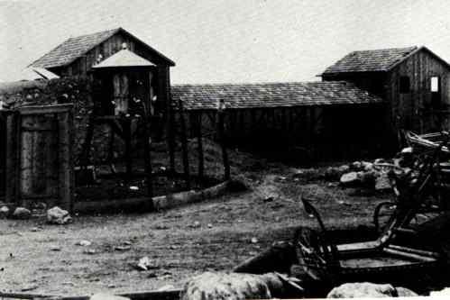 merhavya 1913